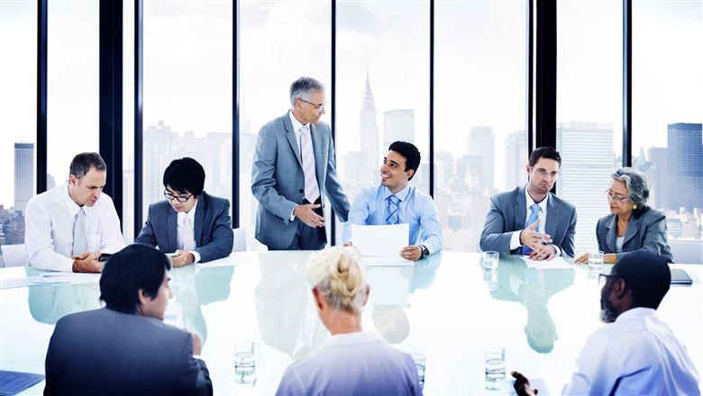 diverse group of professionals in a meeting